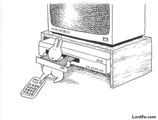 عکسهای کارتونی خنده دار از یک خرگوش بازیگوش