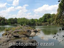دریاچه داخل باغ پرندگان خارج از شهر میسور