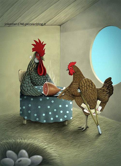 جوک و عکس طنز از حیوانات