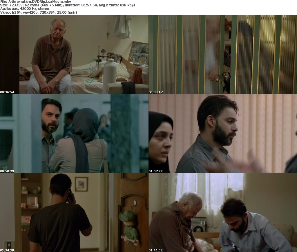 Subtitles For A Separation