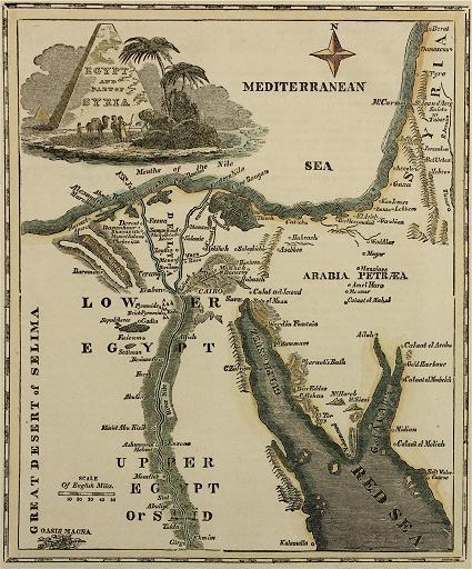 در دلتای نیل / مصر باستان