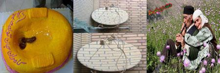 http://s2.picofile.com/file/7168765799/khandedar_irani00.jpg