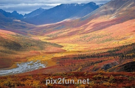 http://s2.picofile.com/file/7186088602/1320862272beautiful_fall_in_photos_02.jpg
