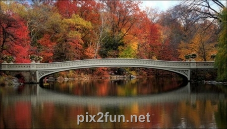 http://s2.picofile.com/file/7186095585/1320862272beautiful_fall_in_photos_20.jpg