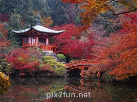 http://s2.picofile.com/file/7186096020/1320862272beautiful_fall_in_photos_30.jpg