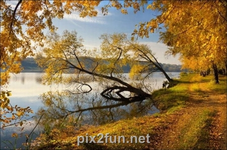 http://s2.picofile.com/file/7186096555/1320862272beautiful_fall_in_photos_41.jpg