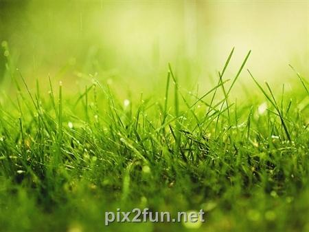 pix2fun net 6578b039fad067929602e746f7de4cec z2d6gqcrfwjfs1y4zn4 عکس های رنگارنگ از لحظه های زیبا