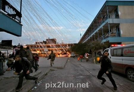 shekar 7 عکس های دیدنی از شکار لحظه ها