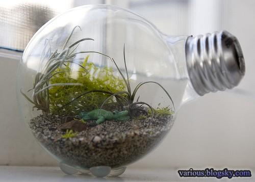بازیافت لامپ برقهای سوخته و تبدیل آنها به وسایل زیبا و دکوری