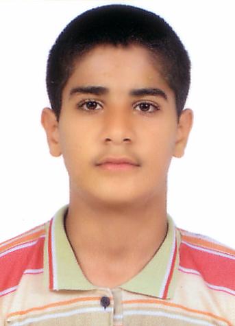 http://s2.picofile.com/file/7221144729/hamed_mirzaii.jpg