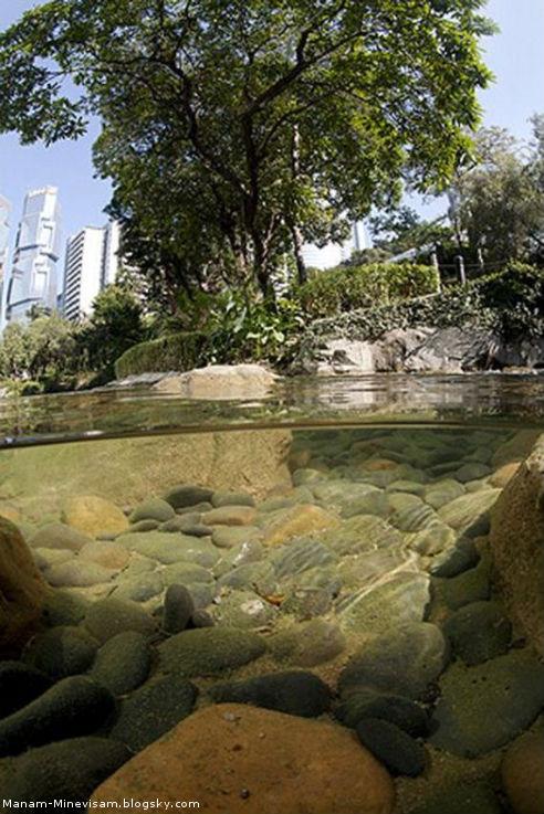 عکسبرداری عمسزمان از زیر و روی آب
