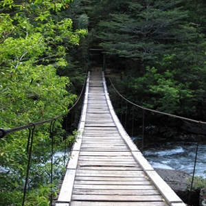http://s2.picofile.com/file/7246091070/old_wooden_bridge_1_munibren.jpg