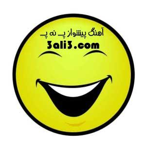 http://s2.picofile.com/file/7270975585/panapa_kod.jpg