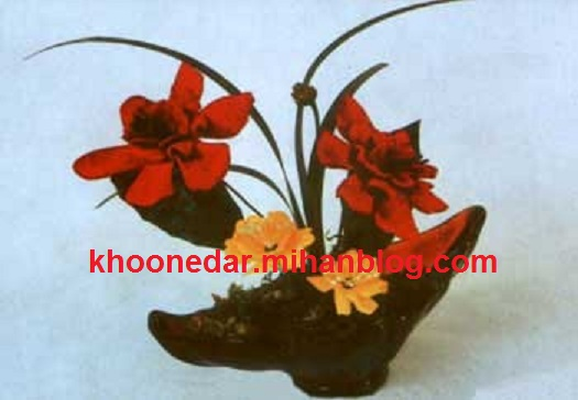 گل بلندر مخملی