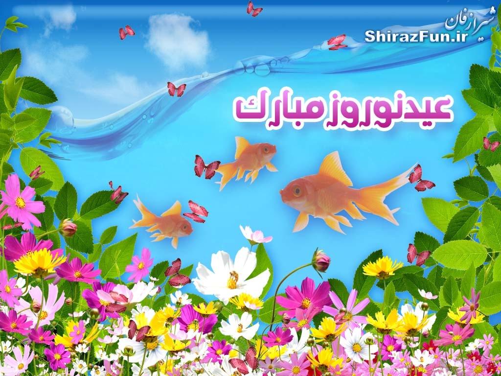 شیراز فان.آی آر
