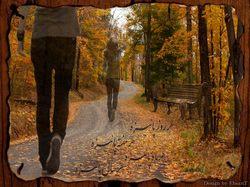 چند والپیپر یا پوستر زیبا از محسن چاوشی