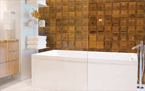 http://s2.picofile.com/file/7341927632/Glazed_bathroom_tiles_3.jpg