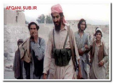 افغانستان وطنم ، بن لادن