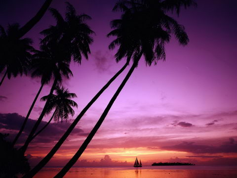 عکس های زیبای طبیعت