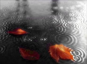 http://s2.picofile.com/file/7567676769/rain.jpg