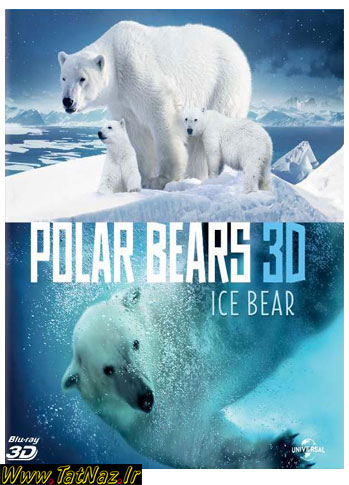 A Summer Odyssey دانلود مستند خرس قطبي Polar Bears: A Summer Odyssey
