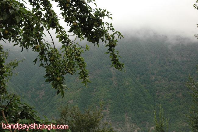 www.BandpaySH.BLogfa.com