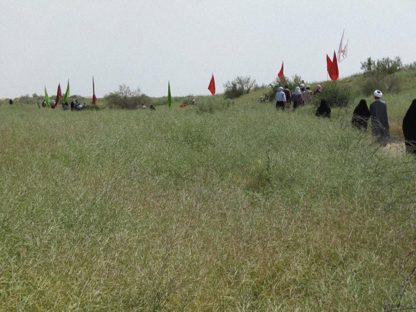33  معرفی منطقه عملیاتی فکه ( فکه ، سرزمینی رملی ، با شن های روان )