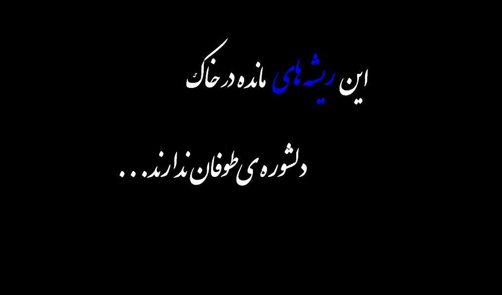 [تصویر: shahid_gomnam2.jpg]