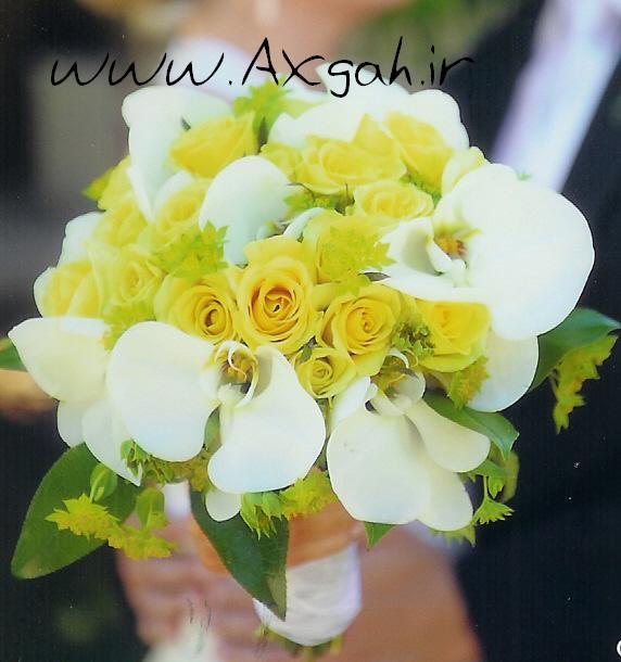 wedding bouquet bouquet bridal bouquets جدید ترین دسته گل های عروس 2013