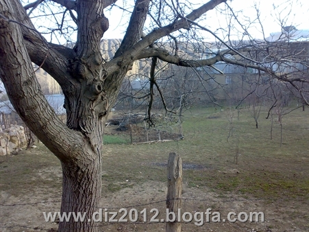 http://s2.picofile.com/file/7673961612/20131122406.jpg