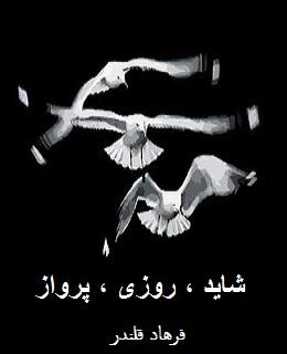 کتاب شعر شاید ، روزی ، پرواز