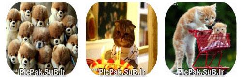 http://s2.picofile.com/file/7689524622/khande_685_picpak_sub_ir_15_.jpg
