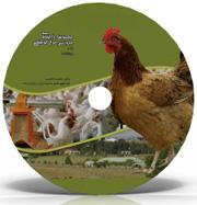 راهنمای جامع پرورش مرغ گوشتی و مرغ تخمگذار