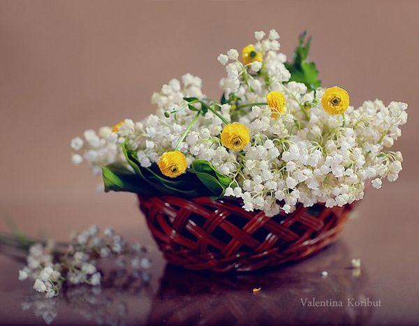 بهار بهار
