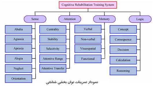 نمودار تمرینات توانبخشی شناختی