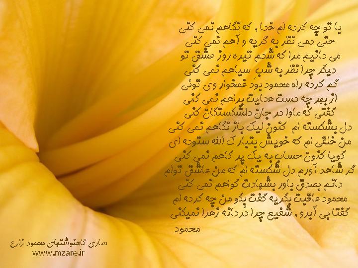 ساری گاهنوشتهای محمود زارع