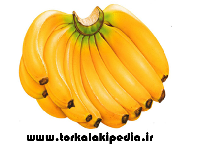 انرژی زا ترین میوه ها بشناسید