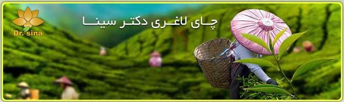 چای لاغری سینا با عصاره گیاهان با مجوز بهداشت