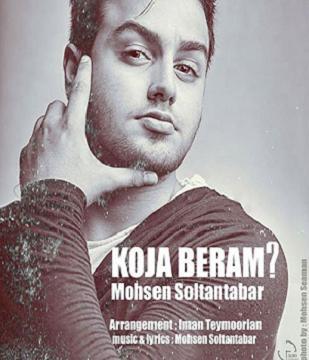 دانلود آهنگ جدید محسن سلطان تبار با نام کجا برم