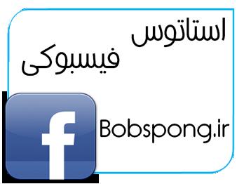 bobspong.ir