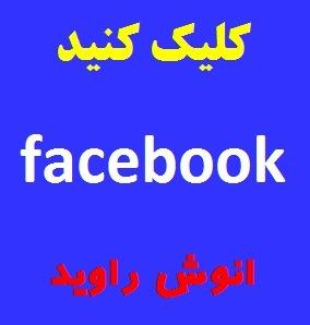 فیس بوک انوش راوید