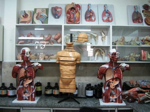 آزمایشگاه بالینی
