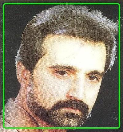 Hamid Gholamali - Shaghayegh