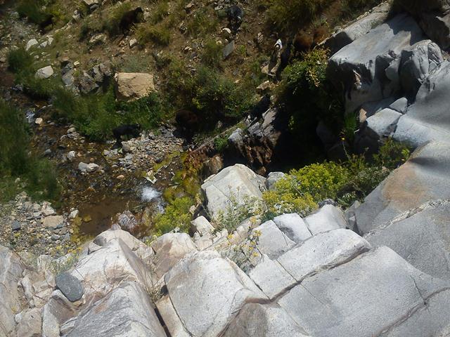 ابشار روستا