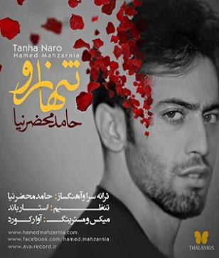 آهنگ جدید,حامد محضرنیا با نام تنها نرو