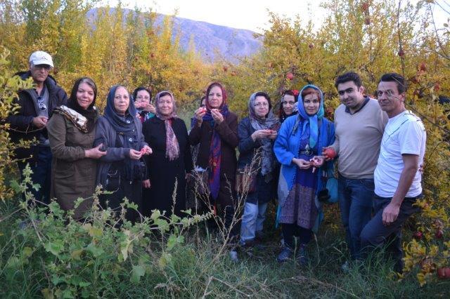 انارستان سیاب
