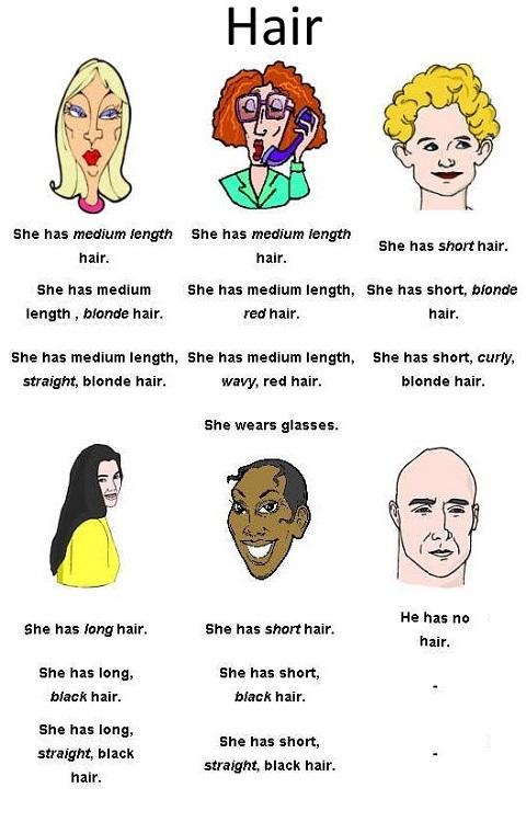 اصطلاحات مربوط به مو در انگلیسی با معنی