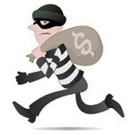 انواع دزد در زبان انگلیسی