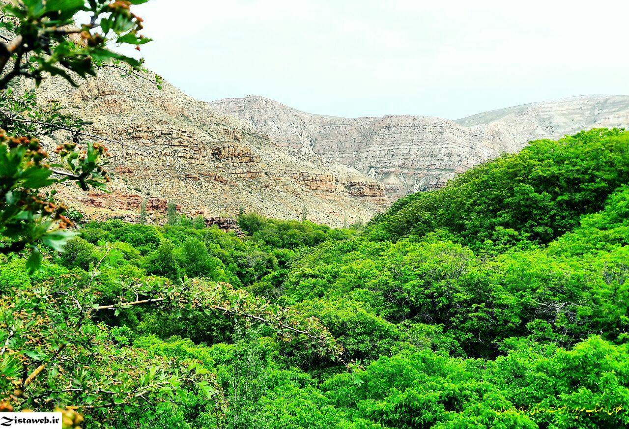 تصاویر زیبای روستای گردشگرپذیر اسفیدان /عکاس سرکار خانم مهتاب مهرپور