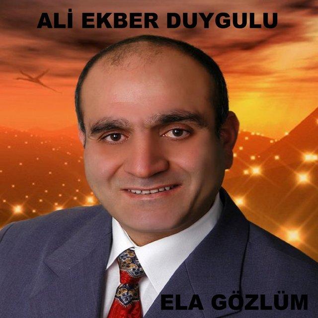 http://s2.picofile.com/file/8262600234/Ali_Ekber_Duygulu_Ela_G%C3%B6zl%C3%BCm_2016_.jpg